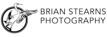Brian Stearns Photography